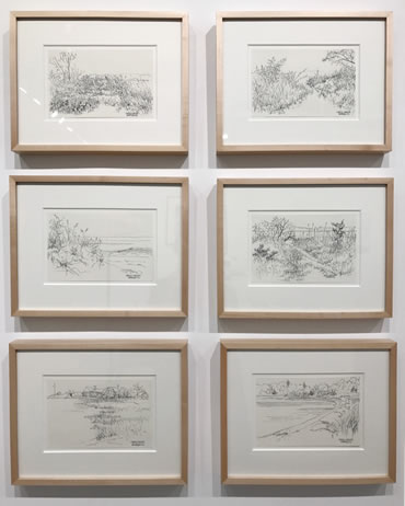 Casey Chalem Anderson, Ink drawings on paper, 2017, 11 X 14 inches framed