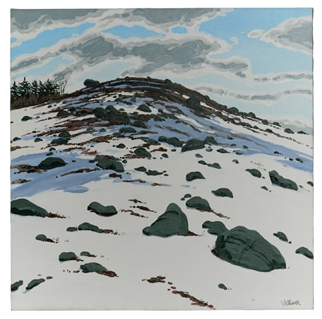 Neil Welliver, (1929-2005), Shadow on Frankfort Barren, 1982, Oil on linen, 36 x 36 inches